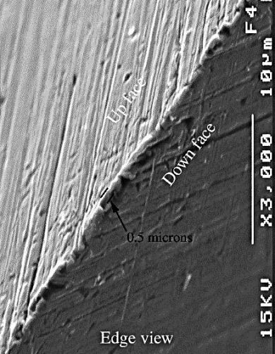 "magnified SEM Picture from prof. John D. Verhoeven's ""Experiments on Knife Sharpening"""